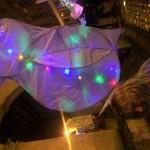 Shepton Lantern Parade