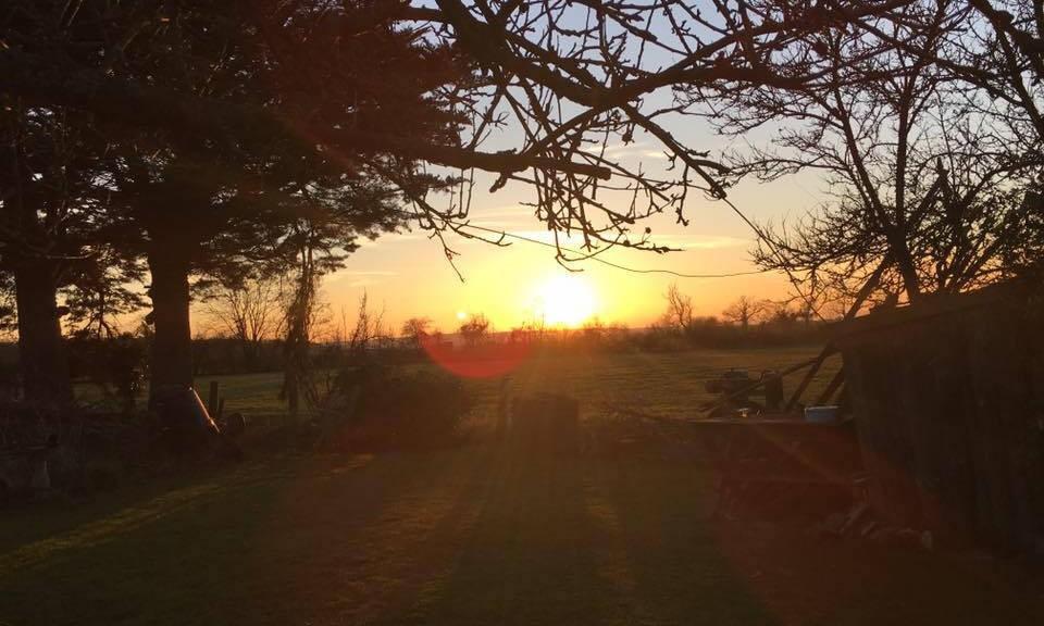 Westfield sunset